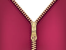 φερμουάρ σακακιών συνδ&epsilon Στοκ Εικόνα
