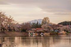Φεστιβάλ ανθών κερασιών στο πάρκο του Τακαμάτσου, Μοριόκα, Iwate, Tohoku, Ιαπωνία σε April27,2018: Ποδήλατα νερού στη λίμνη του Τ Στοκ φωτογραφίες με δικαίωμα ελεύθερης χρήσης