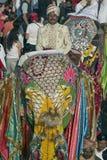 φεστιβάλ ελεφάντων Στοκ Εικόνες