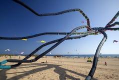 Φεστιβάλ ικτίνων Fuerteventura Στοκ Φωτογραφία