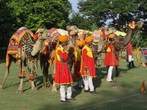 φεστιβάλ Ινδία Jaipur ελεφάντω& Στοκ Εικόνα