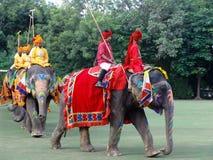 φεστιβάλ Ινδία Jaipur ελεφάντω& Στοκ φωτογραφία με δικαίωμα ελεύθερης χρήσης