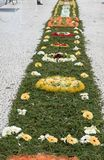 Φεστιβάλ λουλουδιών - οι διάσημοι floral τάπητες στο κέντρο της πόλης του Φουνκάλ κατά μήκος του κεντρικού περιπάτου Avenida Arri στοκ εικόνα