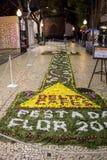 Φεστιβάλ λουλουδιών - οι διάσημοι floral τάπητες στο κέντρο της πόλης του Φουνκάλ κατά μήκος του κεντρικού περιπάτου Avenida Arri στοκ εικόνα με δικαίωμα ελεύθερης χρήσης