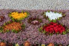 Φεστιβάλ λουλουδιών - οι διάσημοι floral τάπητες στο κέντρο της πόλης του Φουνκάλ κατά μήκος του κεντρικού περιπάτου Avenida Arri στοκ εικόνες με δικαίωμα ελεύθερης χρήσης
