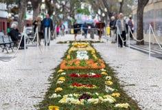Φεστιβάλ λουλουδιών - οι διάσημοι floral τάπητες στο κέντρο της πόλης του Φουνκάλ κατά μήκος του κεντρικού περιπάτου Avenida Arri στοκ φωτογραφίες