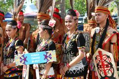 Φεστιβάλ συγκομιδών, Sabah Μπόρνεο Στοκ εικόνες με δικαίωμα ελεύθερης χρήσης