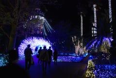 Φεστιβάλ χειμερινού φωτισμού στοκ εικόνα με δικαίωμα ελεύθερης χρήσης