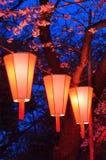 Φεστιβάλ εξέτασης κεράσι-ανθών (ο-Hanami) στοκ εικόνα