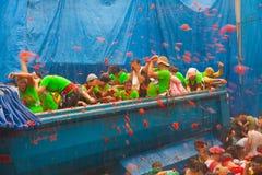 Φεστιβάλ Λα Tomatina όπου οι άνθρωποι ρίχνουν τις ντομάτες Στοκ φωτογραφία με δικαίωμα ελεύθερης χρήσης