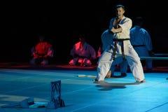 Φεστιβάλ πολεμικών τεχνών στη Ρωσία Στοκ Εικόνες