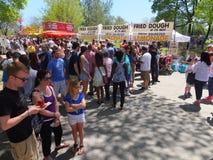 Φεστιβάλ τουλιπών στο Άλμπανυ, κράτος της Νέας Υόρκης Στοκ Εικόνα