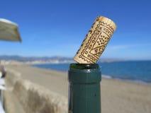 Φελλός μπουκαλιών κρασιού Rioja Στοκ Εικόνες