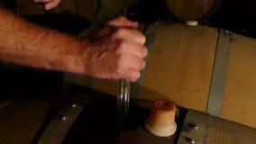 Φελλός που αφαιρείται από το βαρέλι κρασιού απόθεμα βίντεο