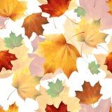 Φθινοπωρινά άνευ ραφής 08 διανυσματική απεικόνιση