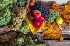 Φθινοπωρινή ακόμα ζωή με τα φρούτα και τα φύλλα σε μια ξύλινη βάση Στοκ Εικόνες