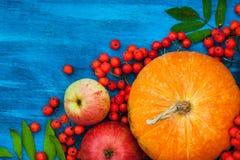 Φθινοπωρινή ακόμα ζωή με τις κολοκύθες, τα μήλα και rowanberry Στοκ φωτογραφία με δικαίωμα ελεύθερης χρήσης