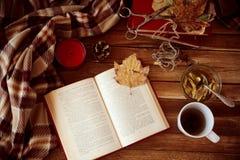 φθινοπωρινή ανάγνωση Στοκ εικόνες με δικαίωμα ελεύθερης χρήσης