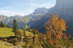 Φθινοπωρινή κοιλάδα karwendel, άποψη στη σειρά βουνών, το αυστριακό τοπικό LAN Στοκ εικόνα με δικαίωμα ελεύθερης χρήσης