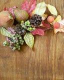 Φθινοπωρινή σύνθεση με τα φρούτα και τις διακοσμήσεις φύλλων για την ημέρα των ευχαριστιών Στοκ Εικόνες