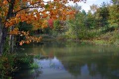 φθινοπωρινή όμορφη σκηνή στοκ εικόνες