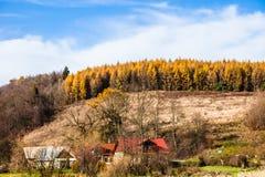 Φθινοπωρινός δασικός και άσπρος βράχος, εθνικό πάρκο Ojcowski, Ojcow, Πολωνία Στοκ Εικόνες