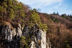 Φθινοπωρινός δασικός και άσπρος βράχος, εθνικό πάρκο Ojcowski, Ojcow, Πολωνία Στοκ εικόνες με δικαίωμα ελεύθερης χρήσης