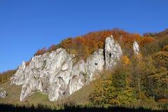 Φθινοπωρινός δασικός και άσπρος βράχος. Στοκ Εικόνες