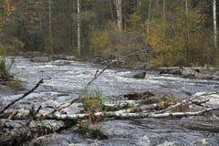 Φθινοπωρινός ξεχυμένος σαν θάλασσα ποταμός Στοκ Εικόνες