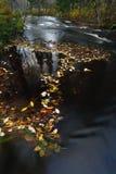 φθινοπωρινός ποταμός φύλλ&o Στοκ Φωτογραφία