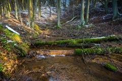 Φθινοπωρινό δάσος τοπίων τον τελευταίο καιρό με το πρώτο χιόνι και το μικρό ποταμό Στοκ φωτογραφία με δικαίωμα ελεύθερης χρήσης