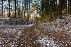 Φθινοπωρινό δάσος τοπίων τον τελευταίο καιρό με το πρώτο χιόνι Στοκ εικόνες με δικαίωμα ελεύθερης χρήσης