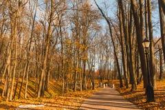 φθινοπωρινό πάρκο Στοκ Φωτογραφία