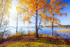 φθινοπωρινό πάρκο 5 pond scene Στοκ εικόνες με δικαίωμα ελεύθερης χρήσης