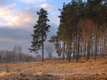 Φθινοπωρινό τοπίο βραδιού στοκ εικόνα με δικαίωμα ελεύθερης χρήσης