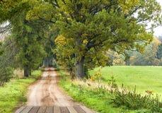 Φθινοπωρινό τοπίο επαρχίας, Λετονία, Ευρώπη Στοκ Εικόνα