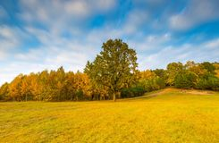 Φθινοπωρινό τοπίο με τη λίμνη και εγκαταστάσεις με τα φθινοπωρινά χρώματα Στοκ Φωτογραφίες