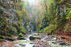 Φθινοπωρινό τοπίο στα βουνά με τον ποταμό Ορεινός ποταμός στοκ εικόνα