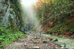 Φθινοπωρινό τοπίο στα βουνά με τον ποταμό Ορεινός ποταμός στοκ φωτογραφίες