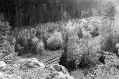 Φθινοπωρινό τοπίο Macha ` s φύσης με τη διαδρομή 080 Στοκ φωτογραφία με δικαίωμα ελεύθερης χρήσης