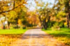 Φθινοπωρινό υπόβαθρο του πάρκου στοκ εικόνα