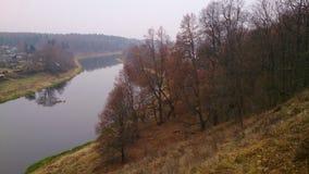 φθινοπώρου ακόμη και χλόης πράσινος καιρός όψης φύλλων πορτοκαλής ήρεμος Στοκ Εικόνα