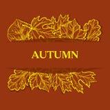 φθινοπώρου ανασκόπησης το αναδρομικά φωτισμένο χρυσό φύλλο χρωμάτων κλάδων φωτεινό αφήνει στο σφένδαμνο το πορτοκαλί δέντρο ήλιων Στοκ Εικόνες