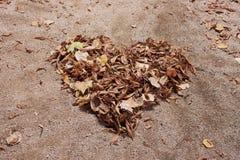 φθινοπώρου απομονωμένο απεικόνιση διάνυσμα καρδιών ανασκόπησης μαύρο Στοκ εικόνες με δικαίωμα ελεύθερης χρήσης