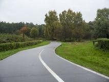 Φθινοπώρου βροχερός δρόμος ασφάλτου ημέρας υγρός με την άσπρη γραμμή στο πάρκο Στοκ Εικόνα