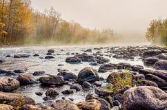 φθινοπώρου μειωμένο κόκκινο πρωινού φύλλων χλόης πράσινο Στοκ εικόνα με δικαίωμα ελεύθερης χρήσης