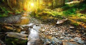 Φθινόπωρο Άνοιξη βουνών, δασικό τοπίο Στοκ Εικόνες