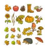 Φθινόπωρο ή εικονίδιο και αντικείμενα πτώσης που τίθενται για το σχέδιο Στοκ Φωτογραφία