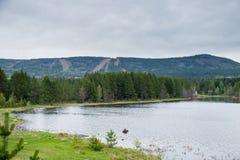 Φθινόπωρο, λίμνη και ένα δάσος πεύκων Στοκ Εικόνα
