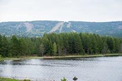 Φθινόπωρο, λίμνη και ένα δάσος πεύκων Στοκ Εικόνες